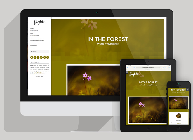 Flights - WordPress theme