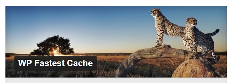 WP Fastest Cache - Best WordPress Cache Plugin
