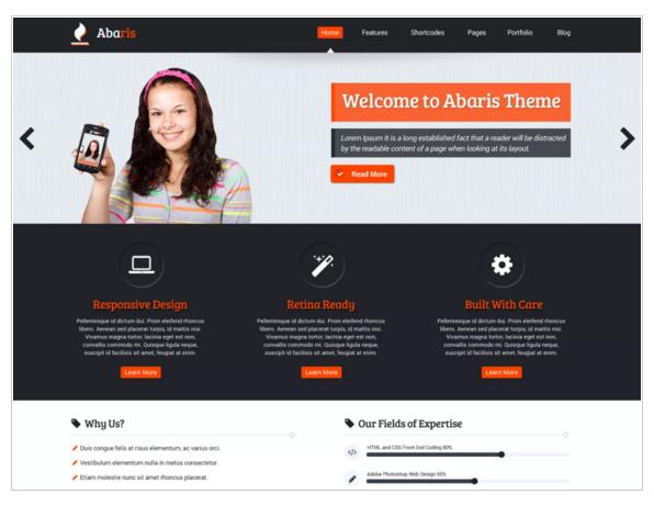Abaris - Best eCommerce WordPress Themes