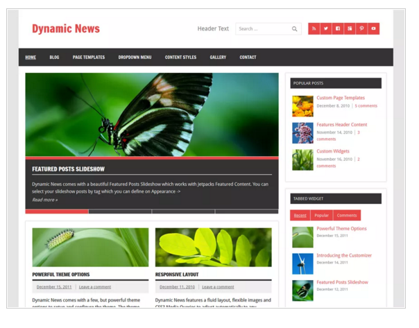 Dynamic News Lite - Responsive WordPress Theme