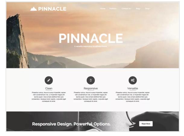 Pinnacle - Best Free eCommerce WordPress Themes